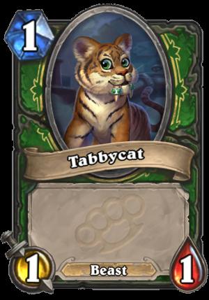 Tabbycat Card