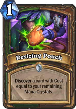 Resizing Pouch Card